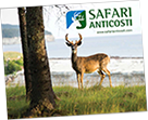 brochure safari anticosti
